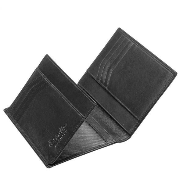 Esquire Ausweis-/Kreditkartenetui 02-3139 New Silk